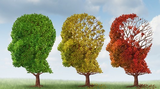 Larger alzheimers dementia cure yale amyloid treatment 9