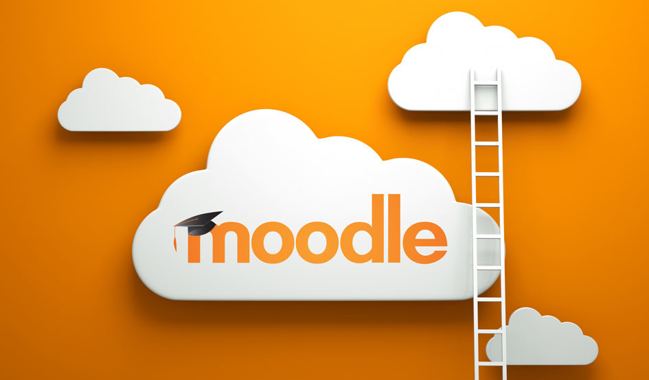 Larger moodle