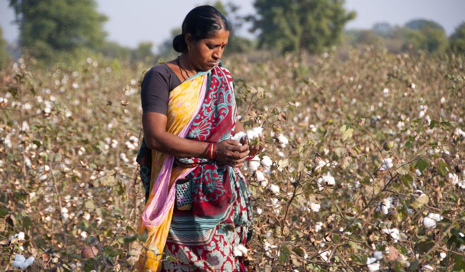 De la india su algod n for Alfombras de algodon indias