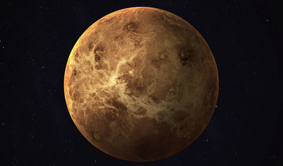 Larger venus
