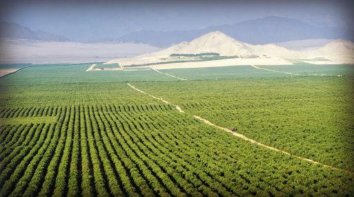 Ministerio de agricultura aprueba reglamento nacional de for Aspersores agricolas
